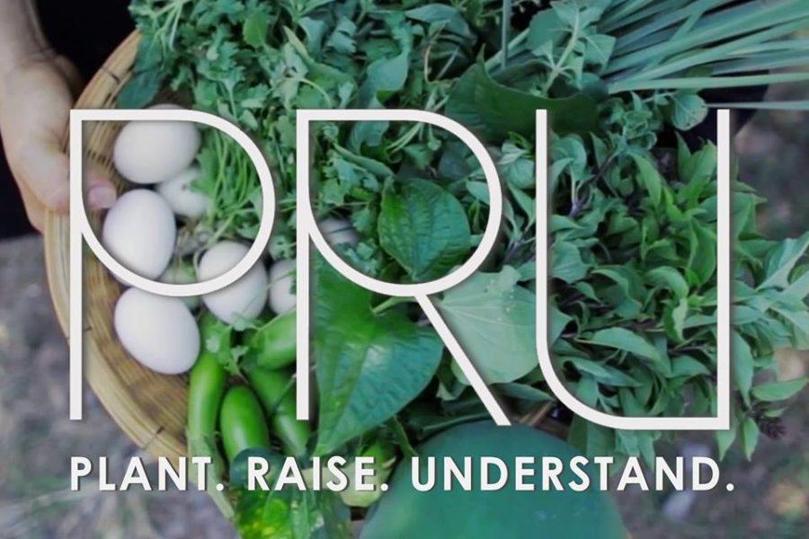 Plant. Raise. Understand.